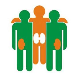 Asociación para a loita contra as Enfermedades do RIL (ALCER)